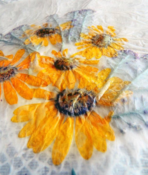 Finished pressed flowers