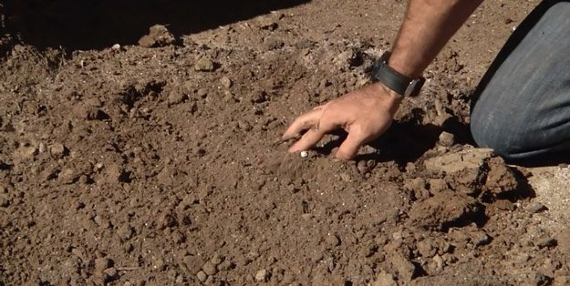 How to Amend Clay Soil Step 5