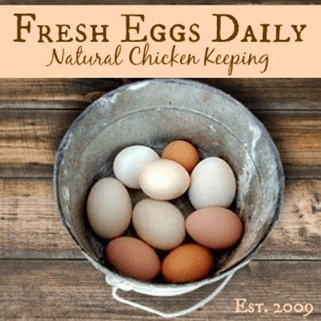 Fresh Eggs Daily | 23 Best Homesteading Websites and Blogs