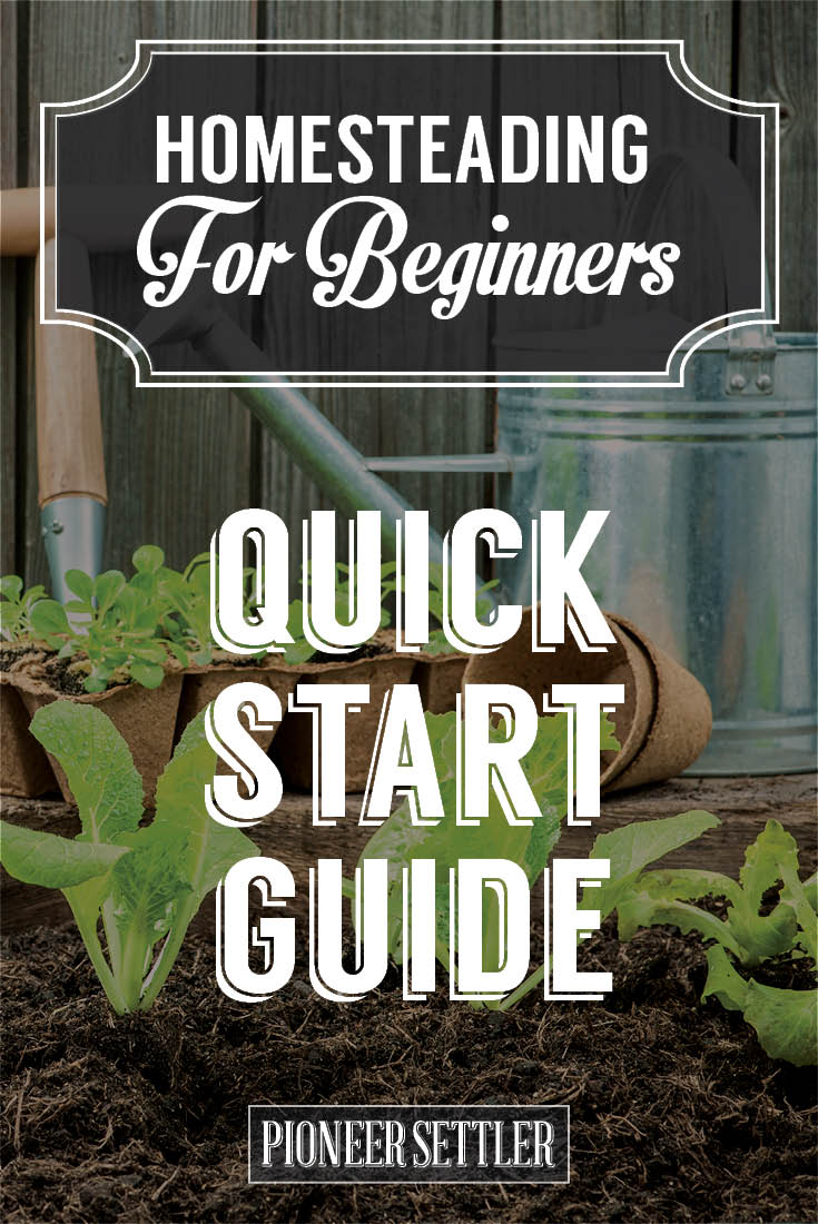 Check out Homesteading For Beginners | Your Homestead Quick Start Guide at https://homesteading.com/homesteading-beginners-homestead-quick-start-guide/