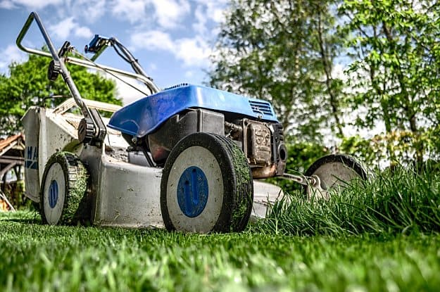 Lawnmower | Handy Homesteading Tools To Make You An Ultimate Homesteader