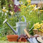 50 Gardening Tips And Tricks To Become A Successful Homesteader