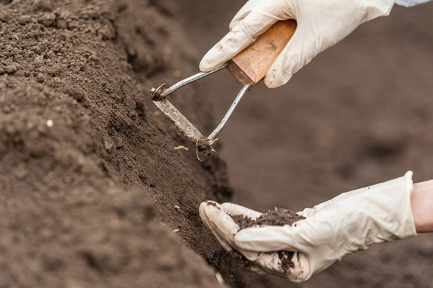 Test Your Soil | Gardening Tips And Tricks To Become A Successful Homesteader