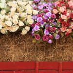 Kickstart Spring By Starting Your Own Straw Bale Garden