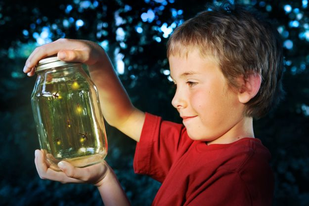 Catching Fireflies in a Mason Jar! | Step 2: Seal Your Jar | A Homesteader's Guide to Catching Fireflies in Mason Jars