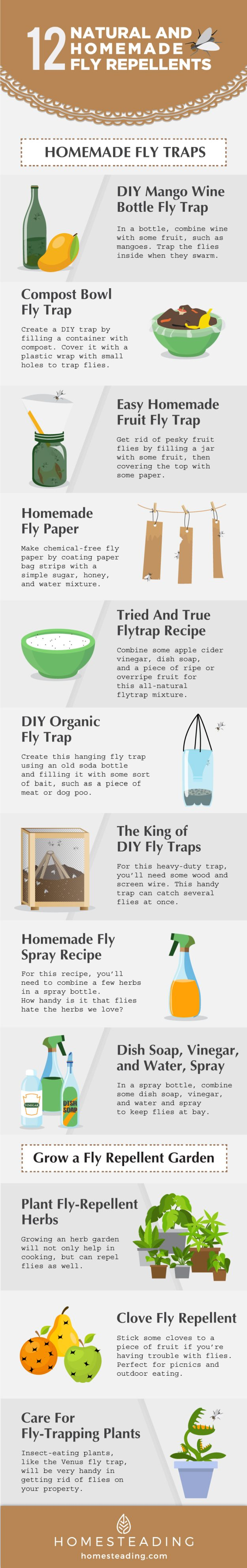 How To Get Rid Of Flies | Natural And Homemade Fly Repellents