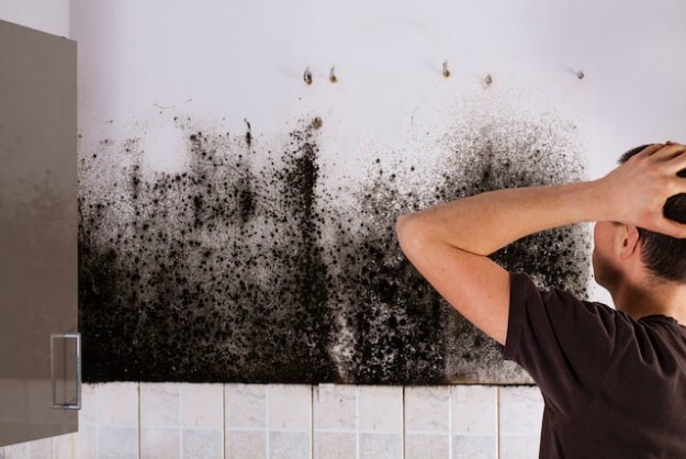 Black Mold | 8 Ways To Kill It Using Natural Home Remedies