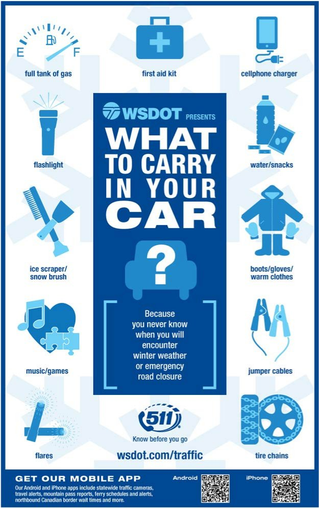 what to carry in your car | infographic | emergency kit