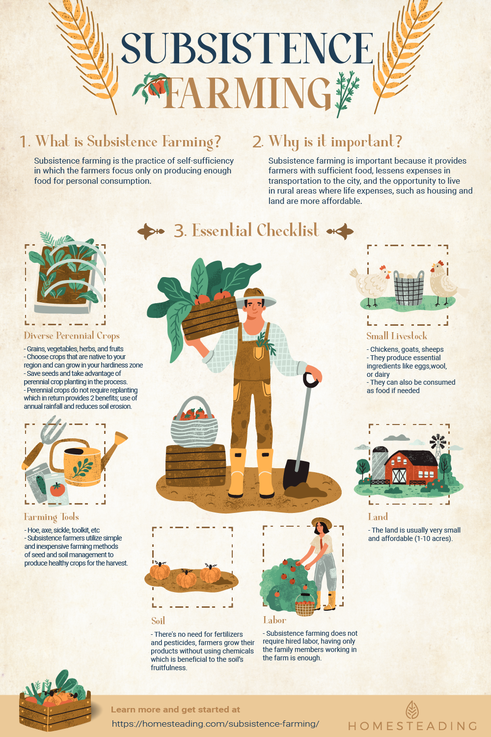 Infographic | Subsistence Farming | Why Homesteaders Should Practice Subsistence Farming Now