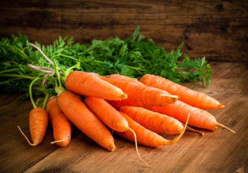 fresh-carrots-bunch-on-rustic-wooden | Homemade Shampoos For Hair Growth and Hair Loss